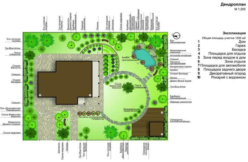 Схема озеленения участка дома